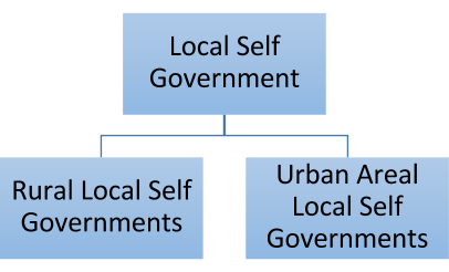 state and local government essay The ap government & politics: united states course provides an analytical perspective on government and politics in the united and state and local governments.
